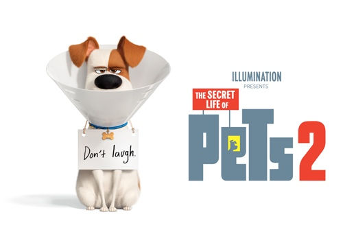 The Secret Life Of Pets 2 Hindi Dubbed Full Movie Download 2019